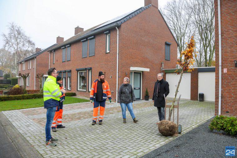 Bomen groenbeleidsplan uitgedeeld
