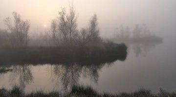 Mistige ochtend in De Groote Peel | Marijke Vaes-Schroën
