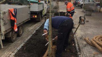 Klinkers wijken voor bomen en planten bij De VLiK Ospel